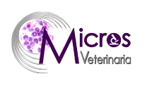 MicrosVet Mascotas